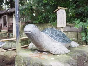 酒列磯前神社 亀